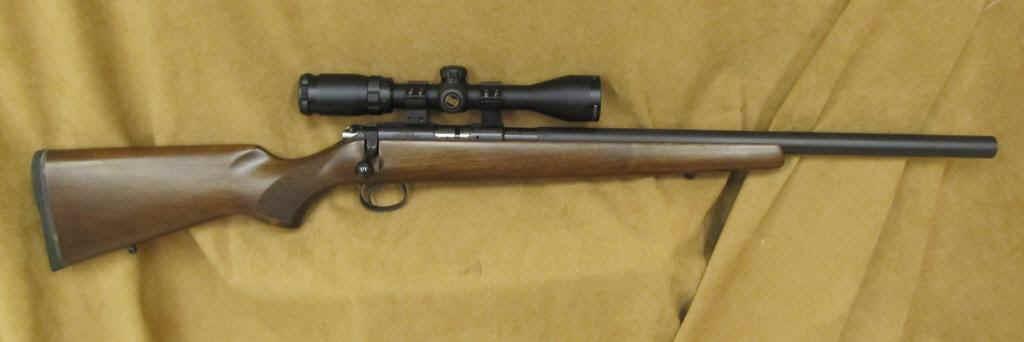 22 Rifles